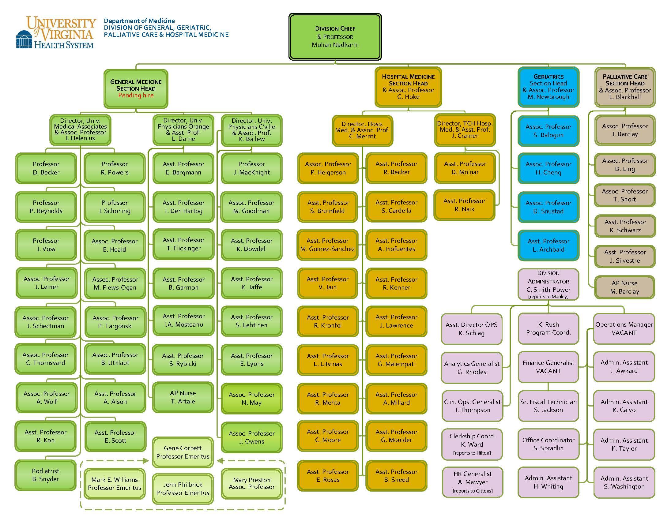 Organizational Chart – Hospital Organizational Chart
